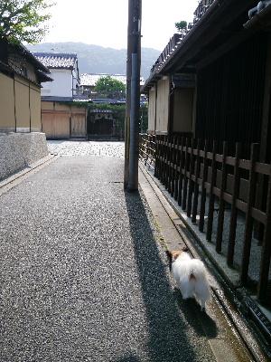 2012京都夏4−15.JPG