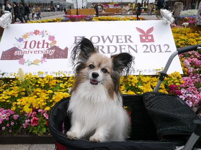 2012横浜1-7.JPG