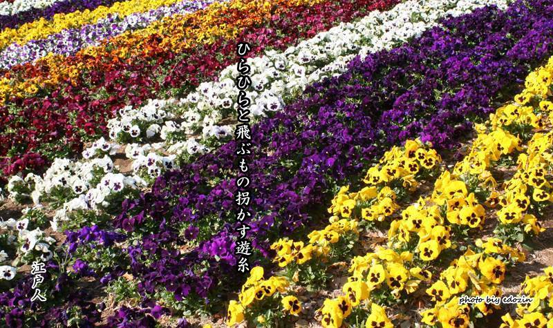 糸 春の 季語 遊