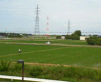 田のあぜ道の草刈り