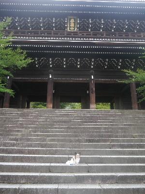 2012京都夏2−5.JPG