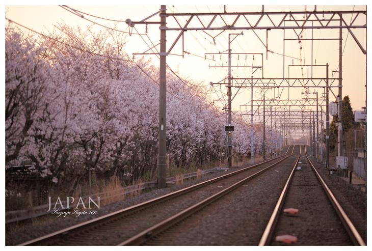 japan-rail-way-1n.jpg