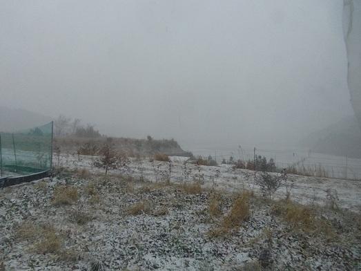 雪・・・.jpg