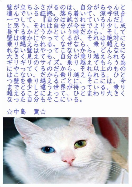 001今日の名言2015.8.26.JPG