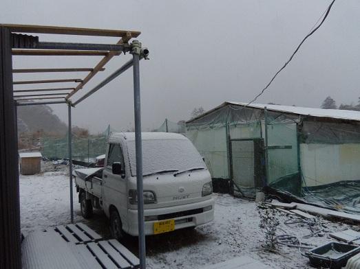 雪・・・・.jpg