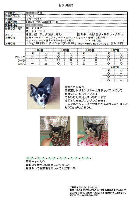 2016.4.8-4.jpg