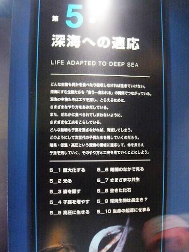 第五章深海への適応.jpg