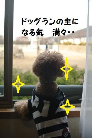 部屋到着のノア珀空 (7).JPG