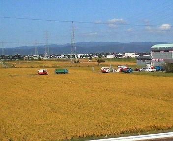 稲刈り_1.jpg