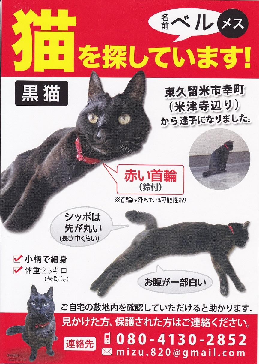 黒猫ベル.jpg