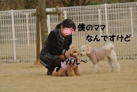 到着後のラン (122).JPG