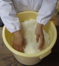 塩と糀を揉み解す2.jpg