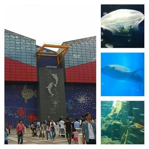 天王山水族館