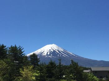 Fuji350.jpg