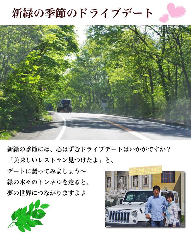 新緑の季節のドライブデートタイトル画像