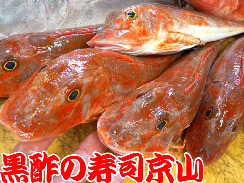 千代田区 寿司 出前 神田松永町