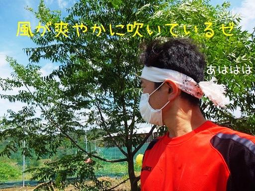 風が爽やかだゼ.jpg