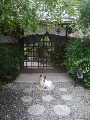 2012京都夏2−7.JPG