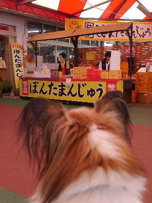 2012益子10.JPG
