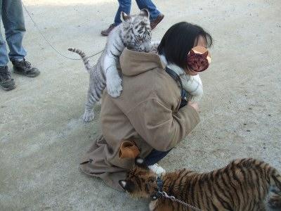 動物園 しろ とり