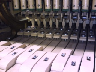 Abstract of Bechstein grand piano