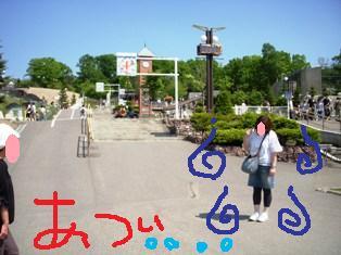 100614-sisyou-DSCN5502.JPG