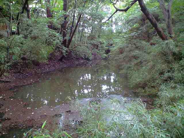 北条時代の堀の跡