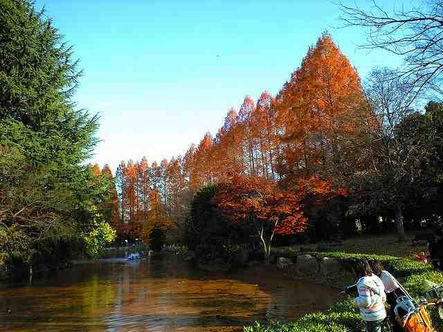 南東部の池