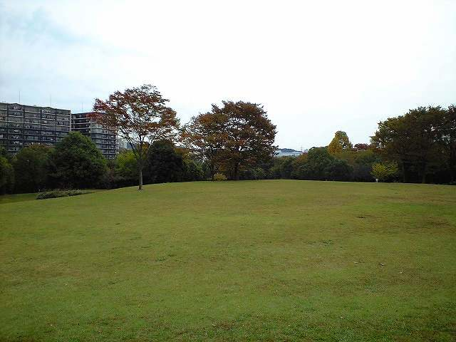 多摩ニュータウンの公園
