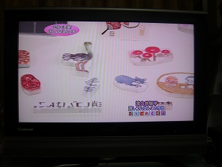 20090330 津久井さん