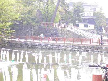 小倉城鯉のぼり