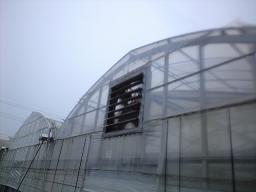 taifuu03.jpg