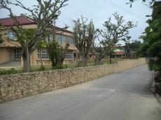竹富小学校