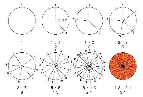 結局、この図を作成しながら何 ... : 図形の角 : すべての講義
