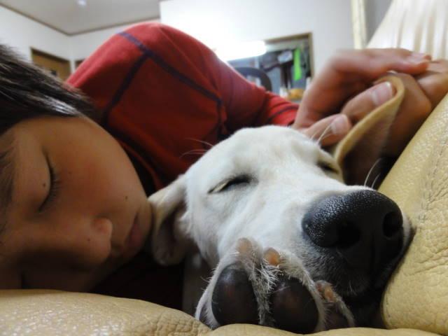 ☆と空おやすみなさい.JPG