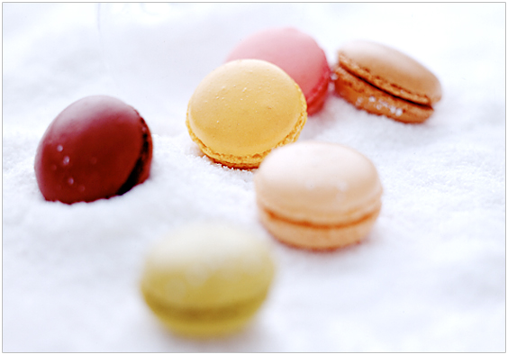 macarons_05.jpg