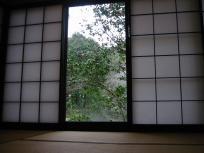 伊古奈 紅からの景色