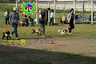 写真00319(1).jpg