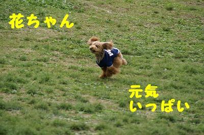 写真00002.jpg