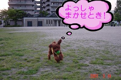 写真00007.jpg
