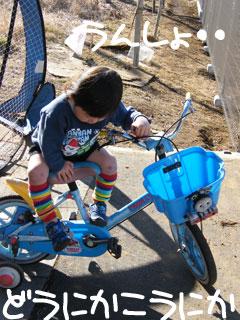 自転車の 小学生 自転車 男の子 : 幼児・子供・小学生の自転車の ...