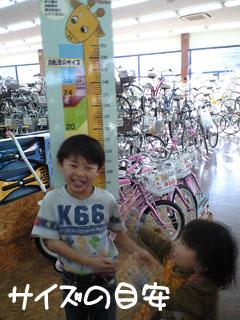 選択肢が狭い男の子自転車 ...