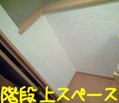 CA3A3245.jpg