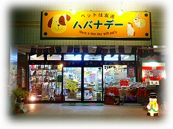 ペットショップハバナデー店舗画像