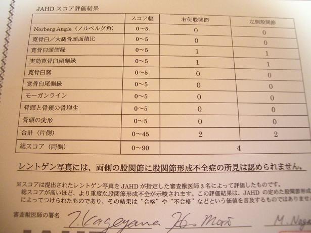 股関節検査結果2