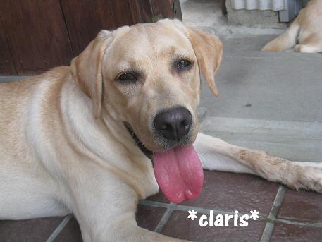 20080816claris