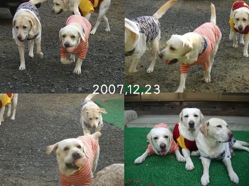 20071223