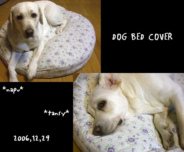 20061229dogbedcover
