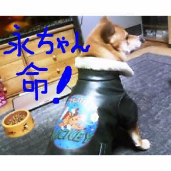 新規イメージ.JPG