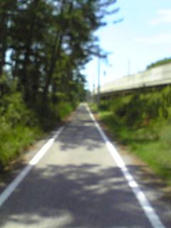 Image253.jpg